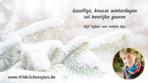 Winterinspiratie - Hilde Schoonjans