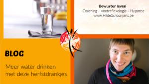 Blog - meer water drinken
