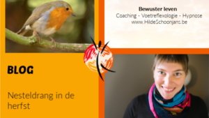 Blog - Nesteldrang in de herfst