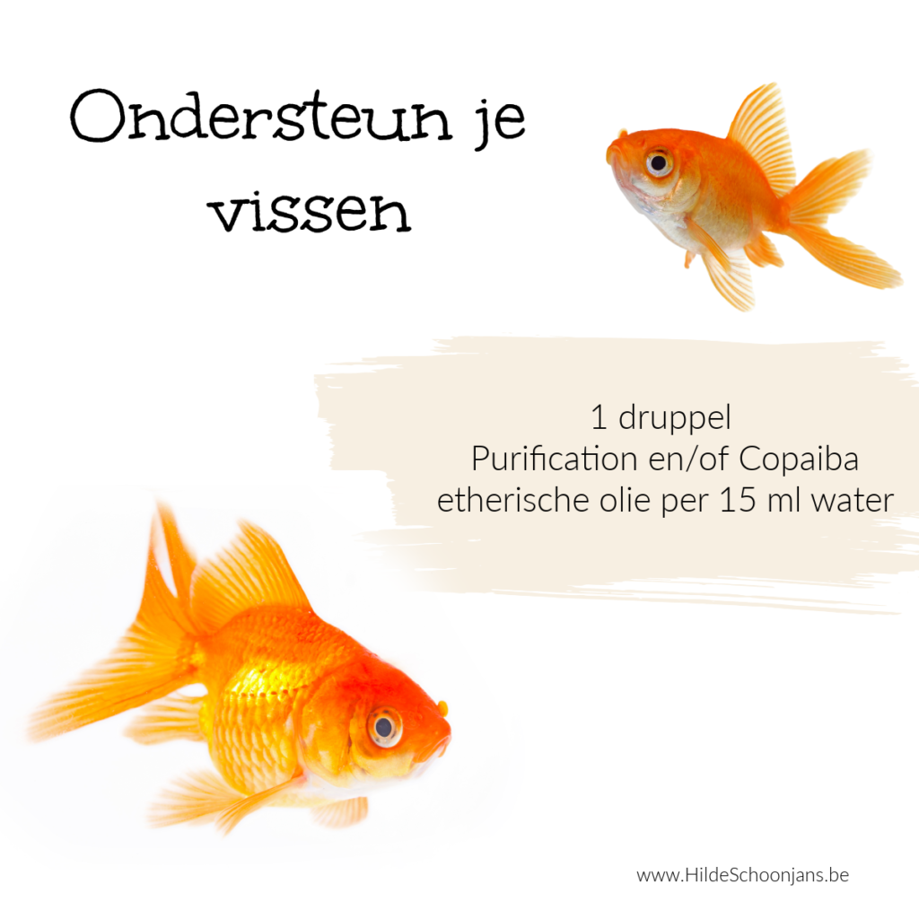 Vissen ondersteunen met etherische olie