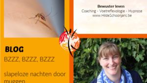 BZZZ, BZZZ, BZZZ - slapeloze nachten door muggen