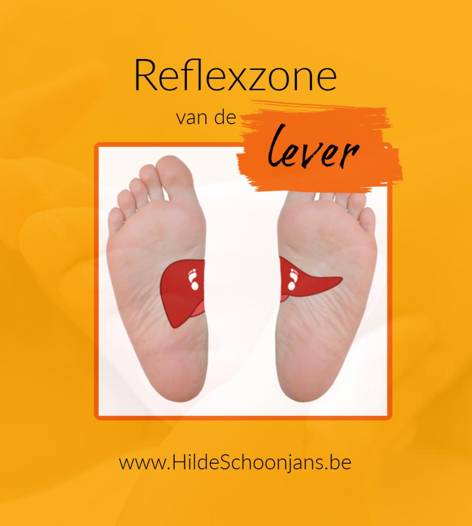 Reflexzone van de lever