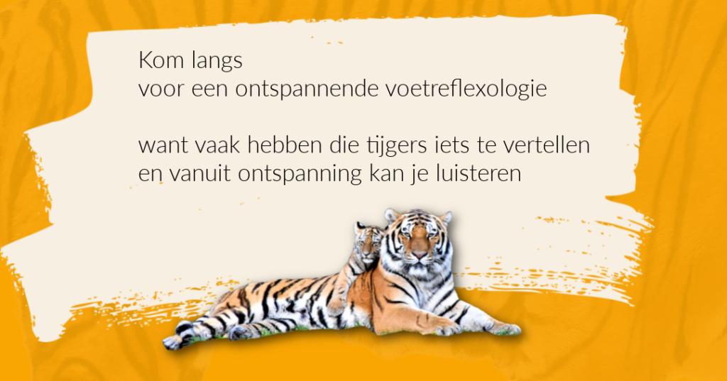 Krijg je tijger klein met voetreflexologie