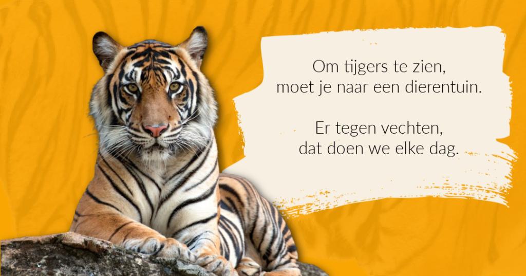 Vechten tegen een tijger