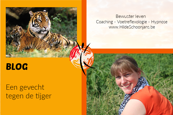 Blog - een gevecht tegen de tijger